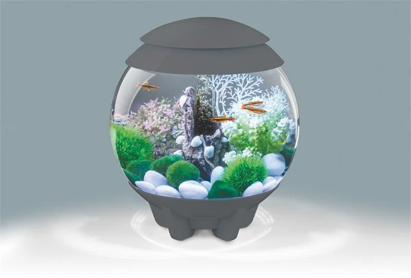 BiOrb 15L Halo Aquarium with Multi Color Remote Lighting