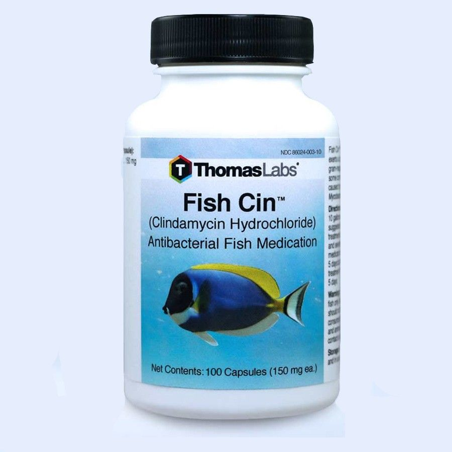 Fish Cin 100 - Clindamycin 150 Mg