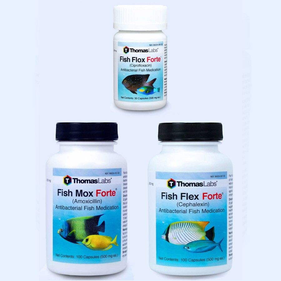 Fish Antibiotics - 3 Count Package