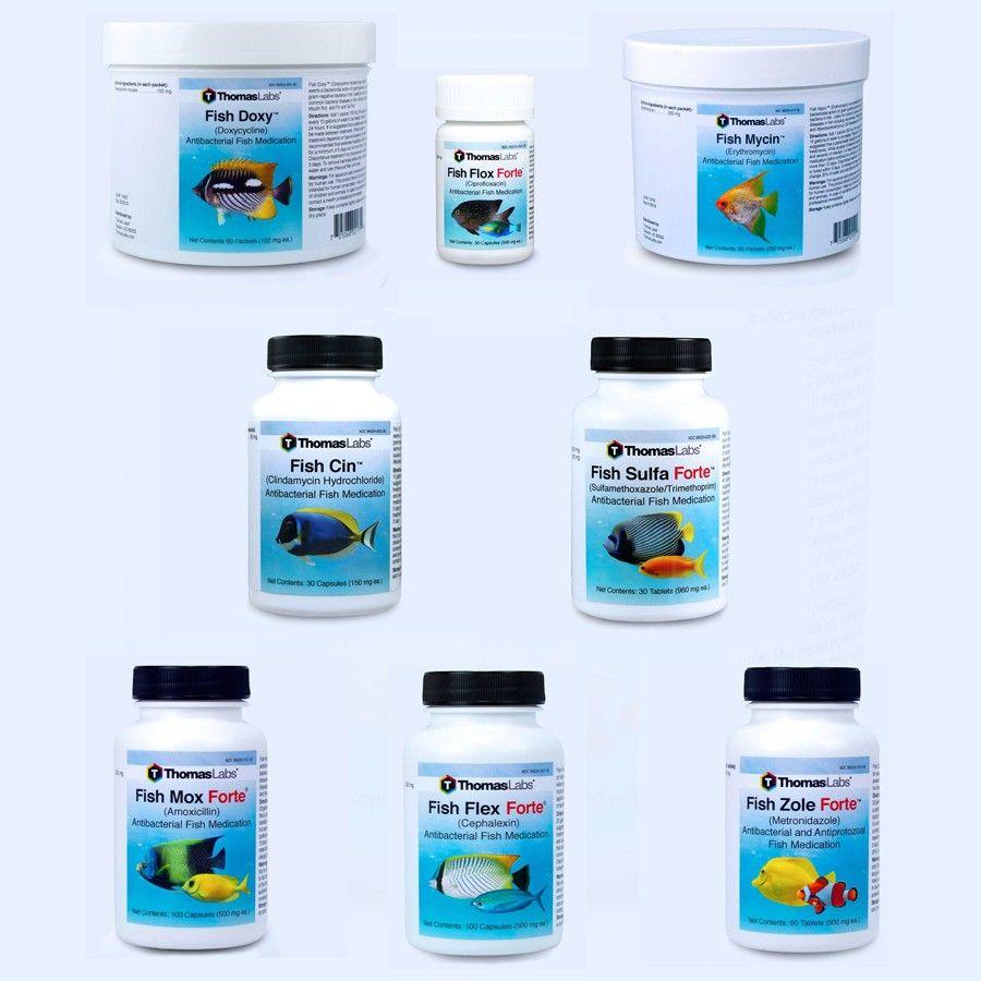 Fish Antibiotics - 8 Count Package