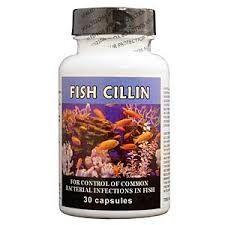 Fish Cillin 30 Count