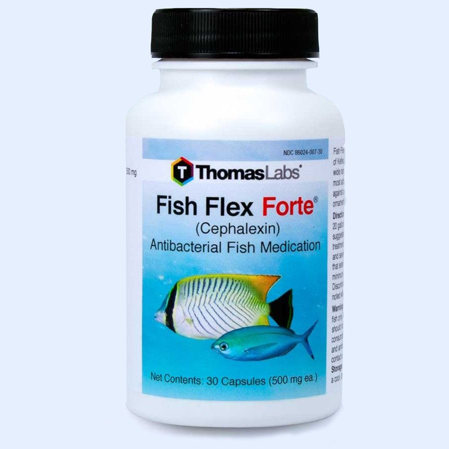 Fish Flex Forte - Cephalexin/Keflex 500 Mg (30 Count