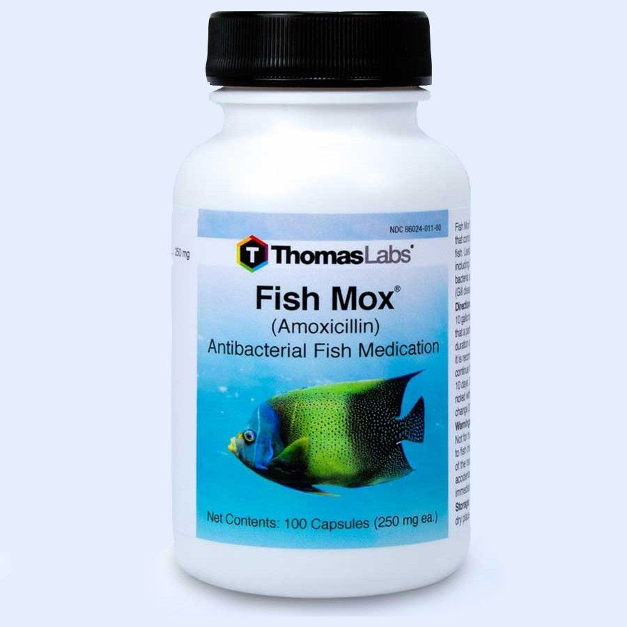 Fish Mox - Amoxicillin 250 Mg (100 Count)