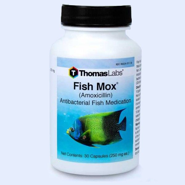 Fish Mox - Amoxicillin 250 Mg (30 Count)