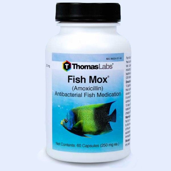 Fish Mox - Amoxicillin 250 Mg (60 Count)