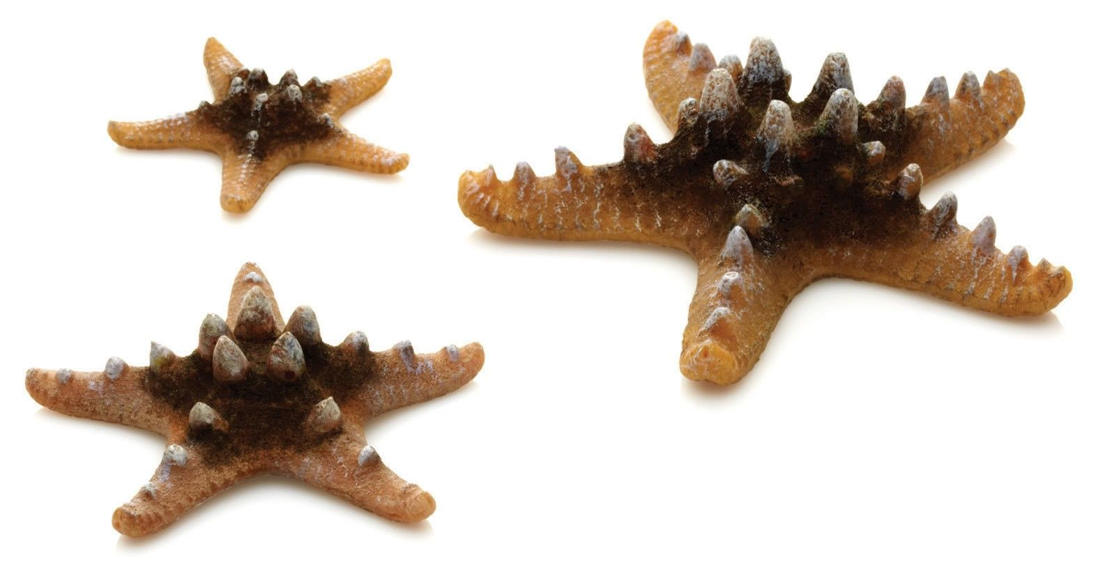 BiOrb Sea Star Decoration Set -Natural