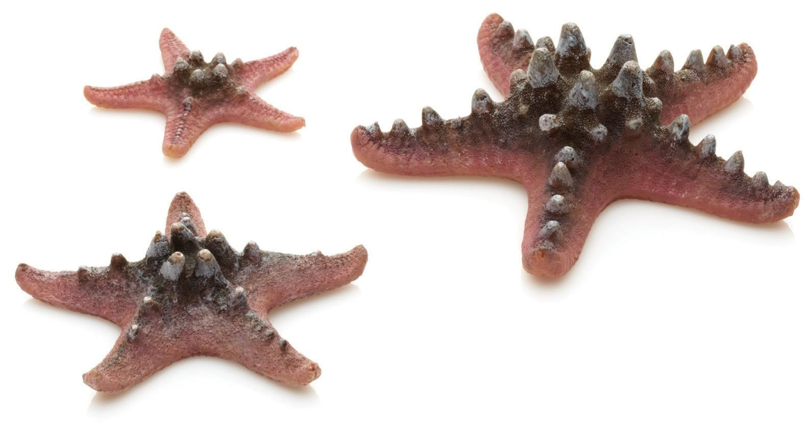 BiOrb Sea Star Decoration Set