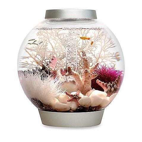 Baby Biorb Aquarium - 4 Gallon - Silver