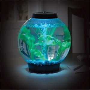 Baby Biorb Moonlight Aquarium - 4 gallon