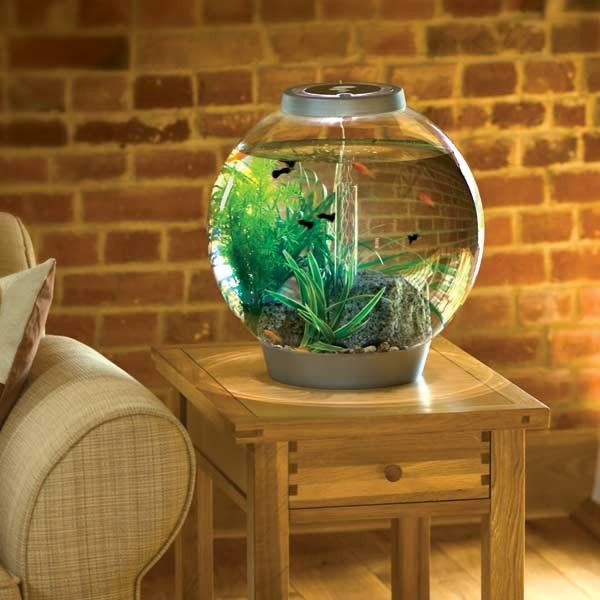 Biorb Aquarium - 8 gallon