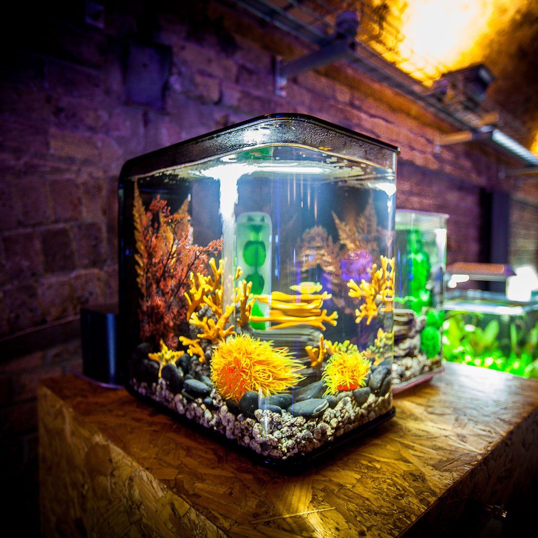 Biorb Flow 15 Aquarium - Black