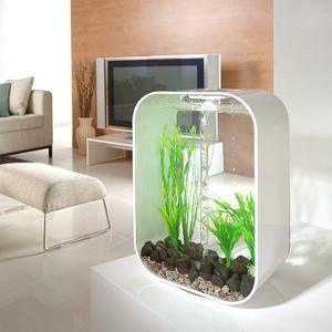 BiOrb Life 30 Aquarium