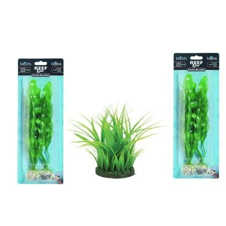 Green Plant Package -Large