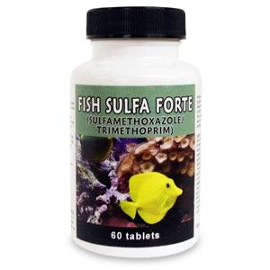 Fish Sulfa Forte - 100 Count (Sulfamethoxazole 800Mg, Trimethoprim 160Mg)