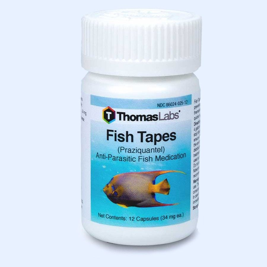 Fish Tapes - Praziquantel 34Mg (12 Count)