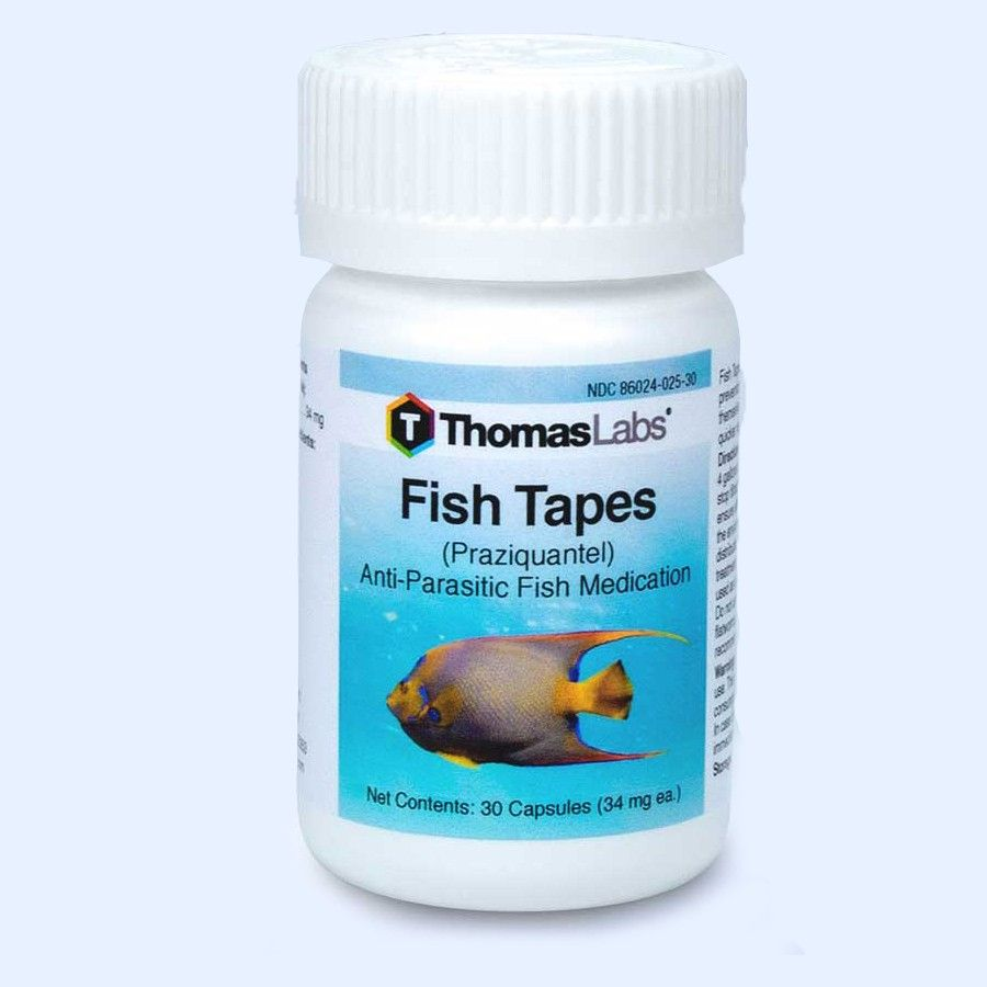 Fish Tapes - Praziquantel 34Mg (30 Count)