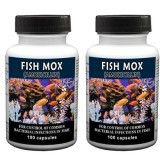 Fish Mox - Capsules 100 Count (Amoxicillin 250 Mg) - 2 Pack
