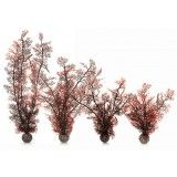 BiOrb Crimson Sea Fan