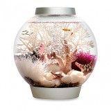 Baby Biorb Aquarium - 4 gallon