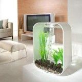 BiOrb Life 30 Aquarium -Pearl White