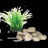 Grass Ring Feng Shui Kit