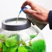 Biorb Water Optimiser