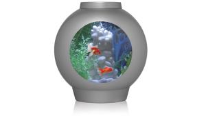 The spyorb fish tank