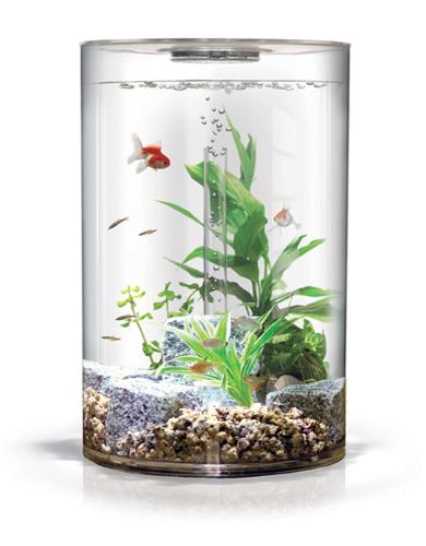 Biorb usa everything biube biorb 1 source for reef for Fish aquarium supplies